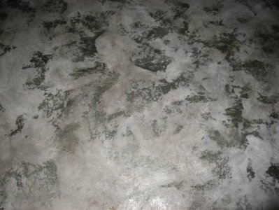 venetian-plaster-with-silver-foils